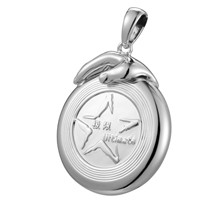 Ultimate Teamwork Disc Pendant